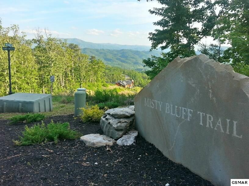 Corner of Misty Bluff Trail in The Summit on Bluff Mountain